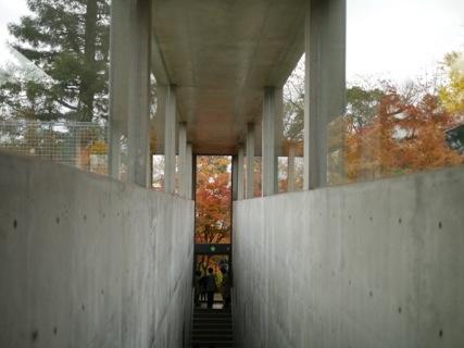 20121125-194135.jpg